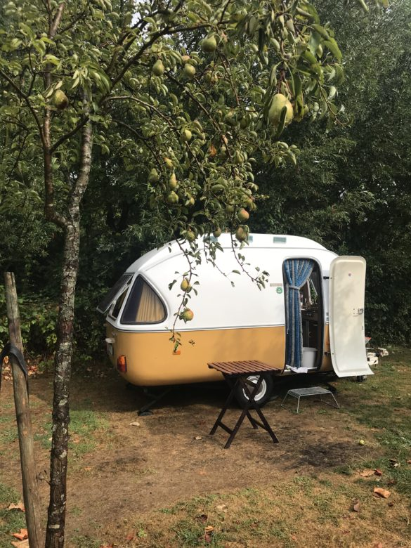 Campsite Eco-tourist farm De Biezen | Campsite between the pear trees