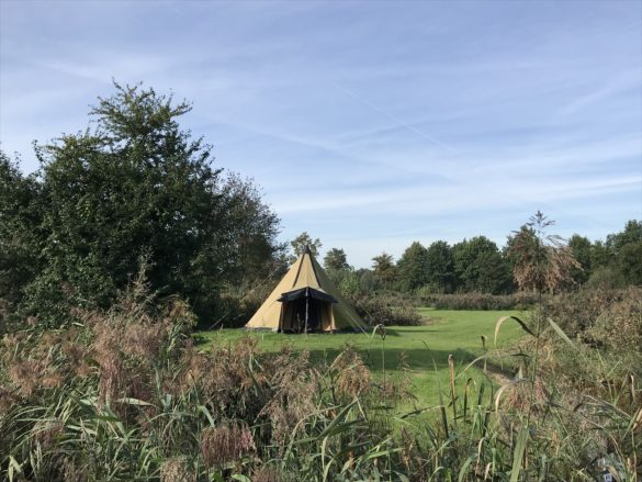 Tipi tent for rent at the campsite